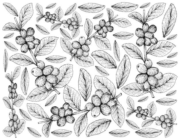 Papel de parede de ilustração de frutas tropicais de esboço desenhado à mão