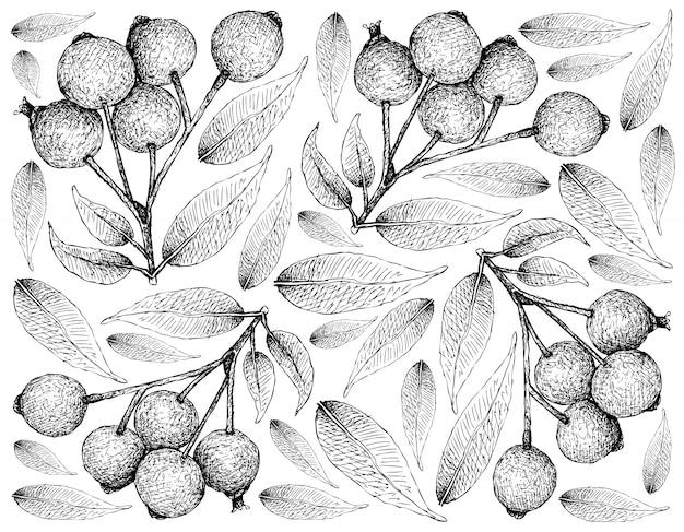 Papel de parede desenhado de mão de cerejas maduras magenta