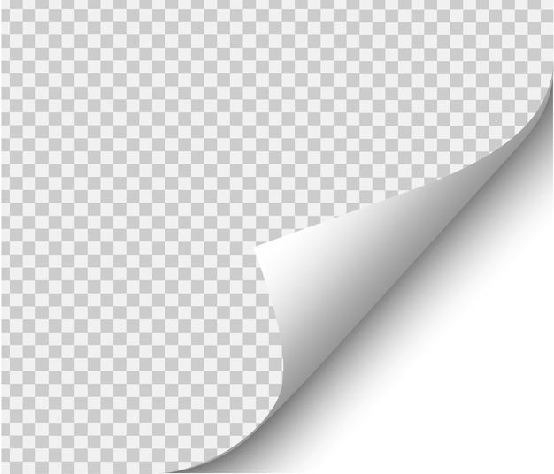 Papel em branco. ilustração