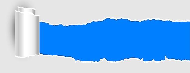 Papel rasgado com banner de efeito de rolo