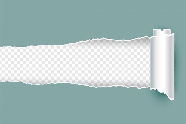 Papel rasgado rasgado realista com bordas enroladas