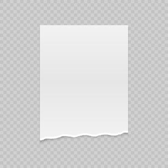 Papel rasgado realista com bordas rasgadas