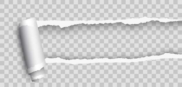 Papel realista realista em branco enrolado. borda de papel rasgado. papel rasgado realista com borda enrolada. papel rasgado
