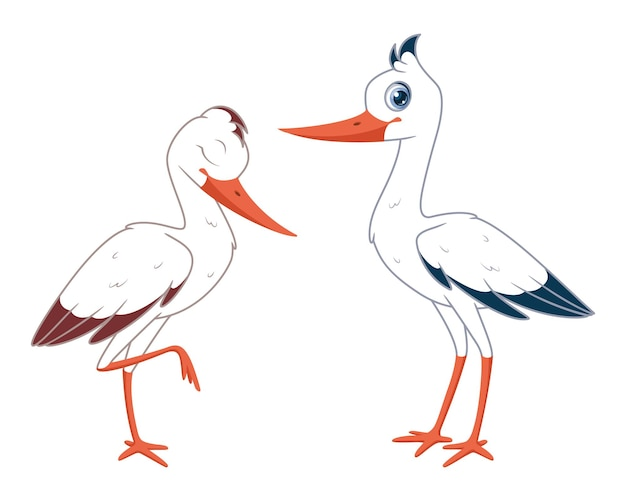 Par de cegonhas brancas ilustração em vetor