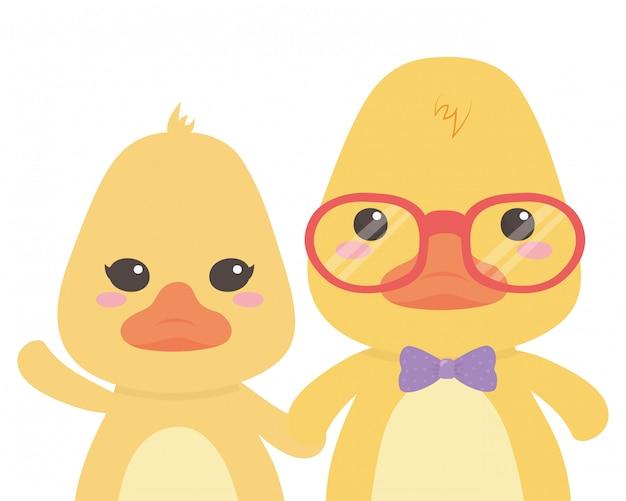 Par, patos, desenhos animados