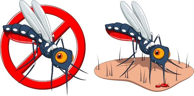 Pare de desenhos animados de mosquito e pele picada de mosquito