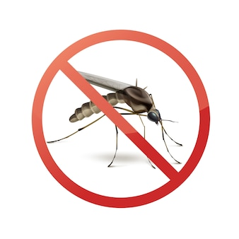 Pare de proibir sinal no mosquito close-up vista lateral isolada no fundo branco