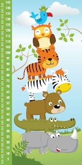 Parede de medição de altura com pilha de desenhos animados de animais engraçados