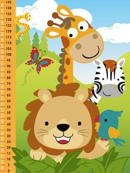 Parede do medidor para crianças com desenhos animados de animais engraçados
