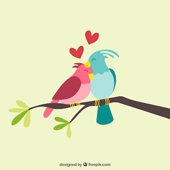 Pares de pássaros