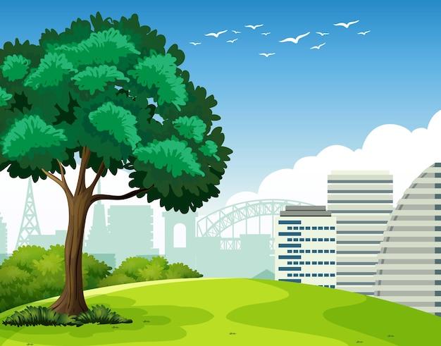 Parque ao ar livre com uma árvore e muitos prédios ao fundo