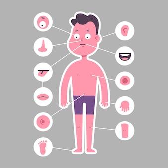 Parte do corpo: nariz, perna, olho, orelha, braço, boca, pé, língua, umbigo, lábios, joelho. menino em personagem de desenho animado de cueca isolado no fundo.