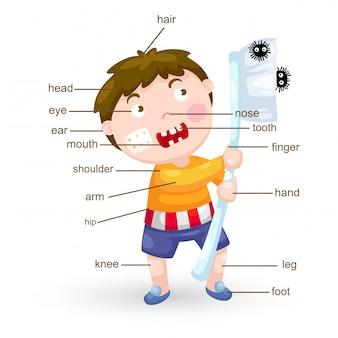 Parte do vocabulário do vetor do corpo