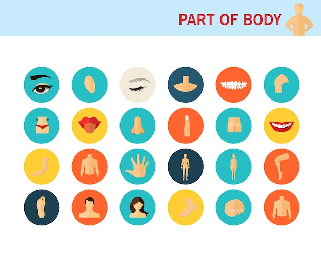 Parte dos ícones plana de conceito de corpo.