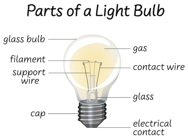 Parte se diagrama de lâmpada