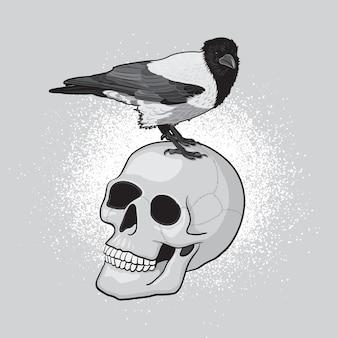 Pássaro corvo no crânio humano