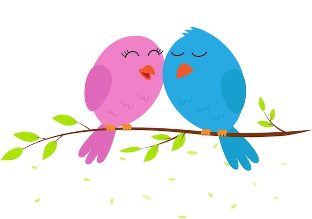 Pássaro de amor em um galho