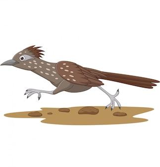 Pássaro de roadrunner dos desenhos animados, correndo na estrada