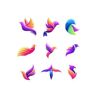 Pássaro definir design de logotipo de cor gradiente