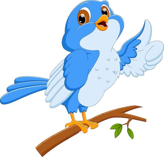 Pássaro desenho animado polegar para cima