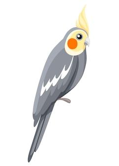 Pássaro do papagaio calopsita. papagaio em cartazes de ramo, ilustrando livros infantis. estilo de desenho animado de pássaros tropicais. isolado no fundo branco.