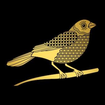Pássaro dourado isolado no preto