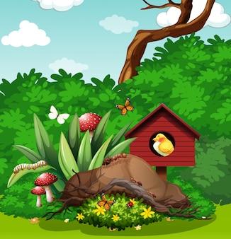 Pássaro e insetos no jardim