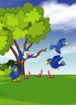 Pássaro encontrar vermes por uma árvore