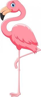 Pássaro flamingo rosa dos desenhos animados