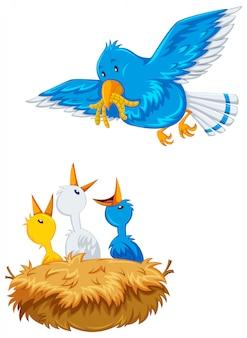 Pássaro mãe alimentando os filhotes