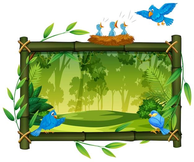 Pássaro na moldura de madeira de natureza
