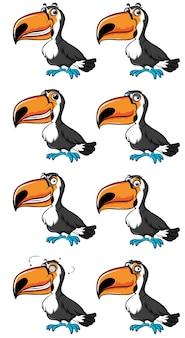 Pássaro toucan com diferentes emoções