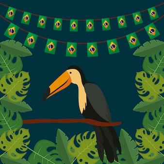 Pássaro tradicional tucano