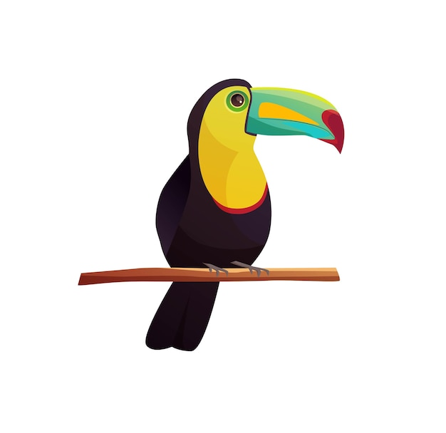 Pássaro tropical tucano sentado em um galho de árvore.