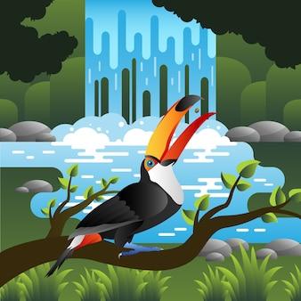 Pássaro tucano na floresta com cachoeira