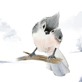 Pássaro tufted do titmouse no vetor da aquarela do inverno Vetor grátis