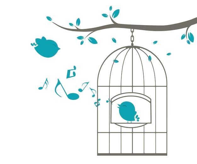 Pássaros cantando na gaiola