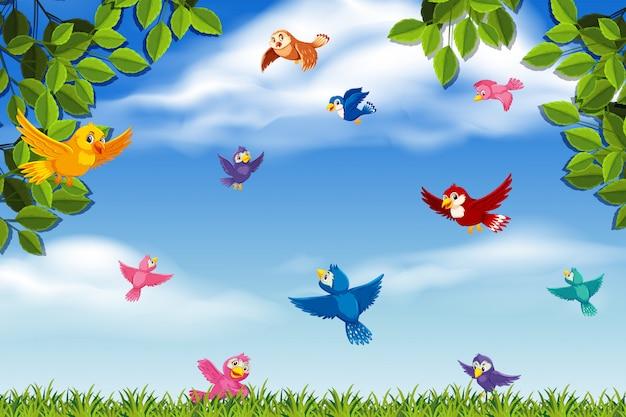 Pássaros coloridos na cena da selva