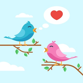 Pássaros de amantes casal fofo