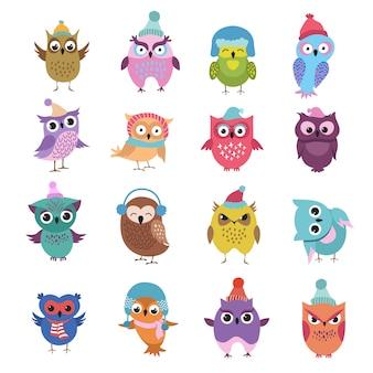 Pássaros de corujas de inverno engraçado dos desenhos animados personagens de vetor
