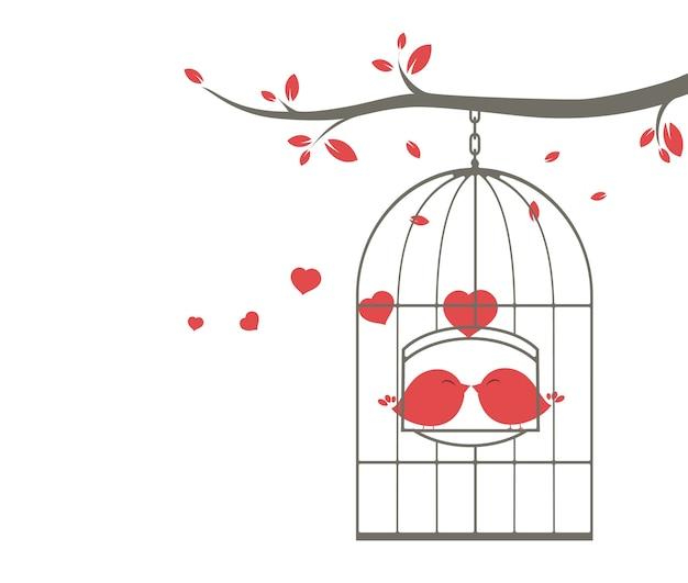 Pássaros do amor cantando na gaiola