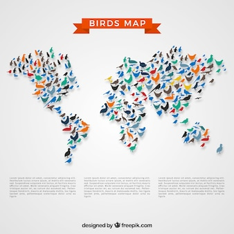 Pássaros mapa