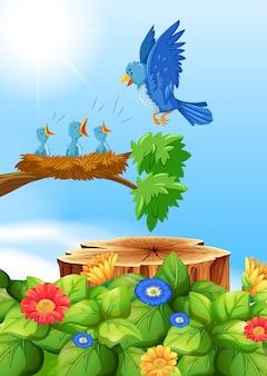 Pássaros no ninho da árvore