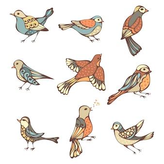 Pássaros ornamentados isolados.