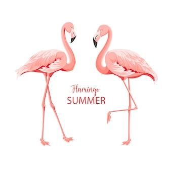 Pássaros rosa tropicais.