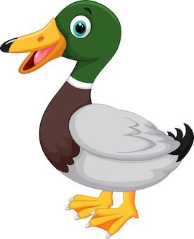 Pato bonito dos desenhos animados