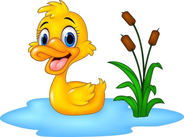 Pato de bebê fofo flutua na água