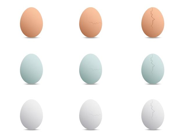 Pato de frango e ovos de galinha fritos, de redondo a rachado