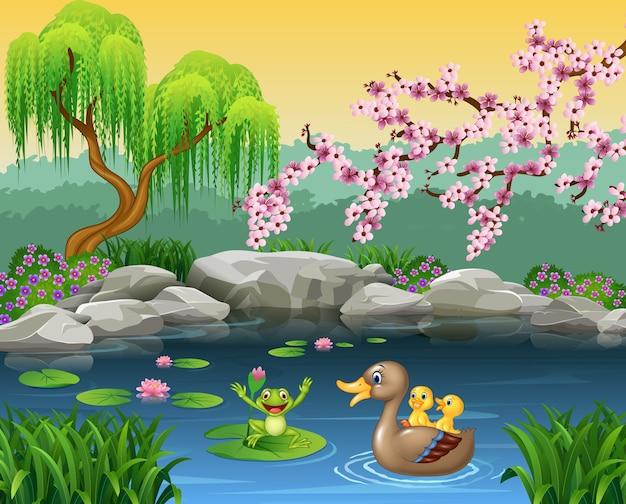 Pato de mãe engraçado dos desenhos animados com o sapo na água de lírio