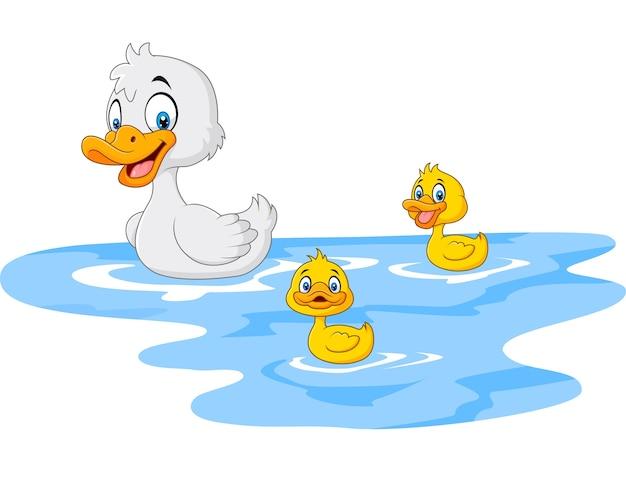 Pato de mãe engraçado dos desenhos animados com pato bebê flutua na água